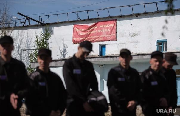 ⭕Правительство РФ планирует заработать на заключен...